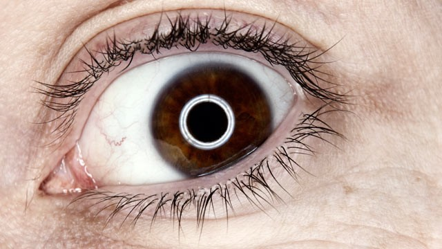 Eyeball-Scanning Is Now a Reality, Coming to a Middle School Near You | Betabeat