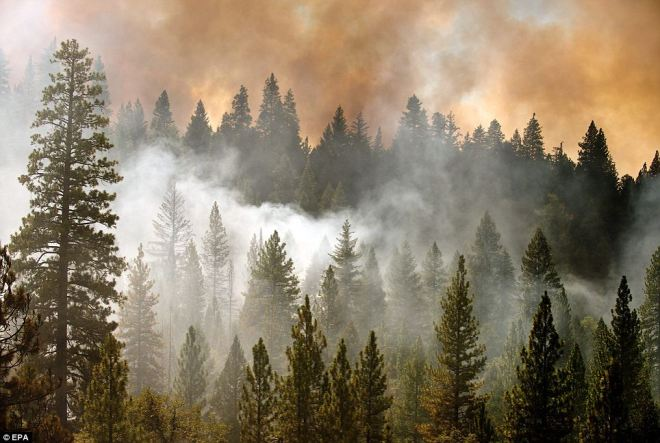 Yosemite fire: San Francisco power and water supply in danger | Mail Online