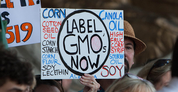 » Vermont Becomes First to Have Mandatory GMO Labeling Alex Jones' Infowars: There's a war on for your mind!
