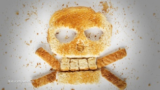The hidden weed killer in your BREAD: Commercial wheat doused with cancer-causing glyphosate herbicide right before harvest... and you're eating it! - NaturalNews.com