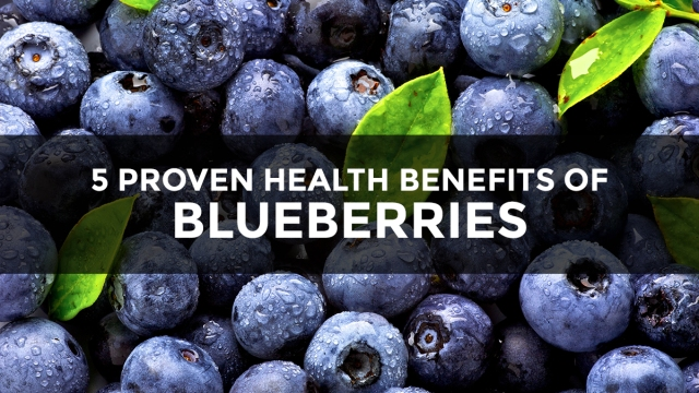 """Image: If blueberries were pharmaceuticals, they would be hailed as the greatest """"miracle"""" health breakthrough in the history of medicine"""