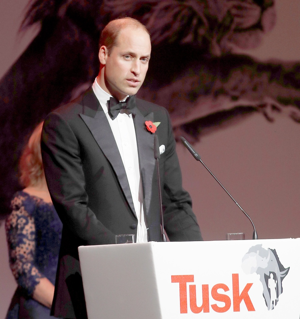 Tusk Conservation charity gala, The Roundhouse, London, UK - 02 Nov 2017