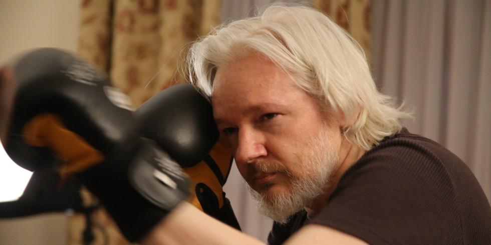 assange-box